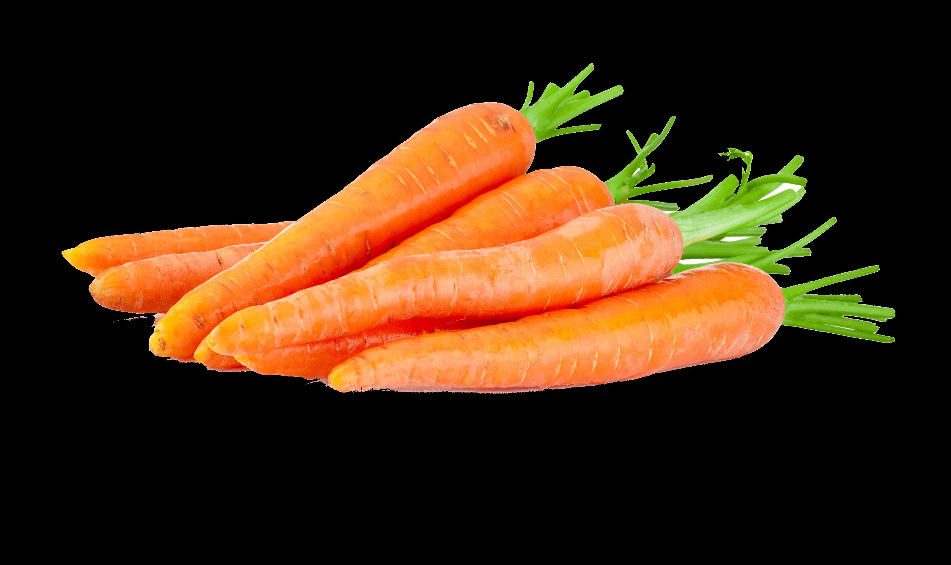 <p>Ihnen liefern wir immer frisches regionales Qualitätsgemüsein umweltschonender Verpackung<br /> </p>